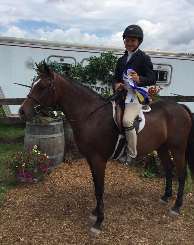 show pony Amazing Grace South Florida SPCA Rescue Pony Palm Beach Equine Clinic