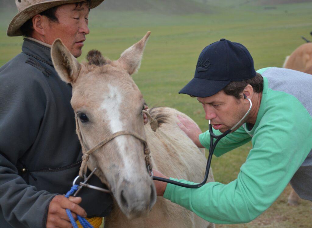 Dr. Peter Heidmann, DVM, MPH Palm Beach Equine Clinic