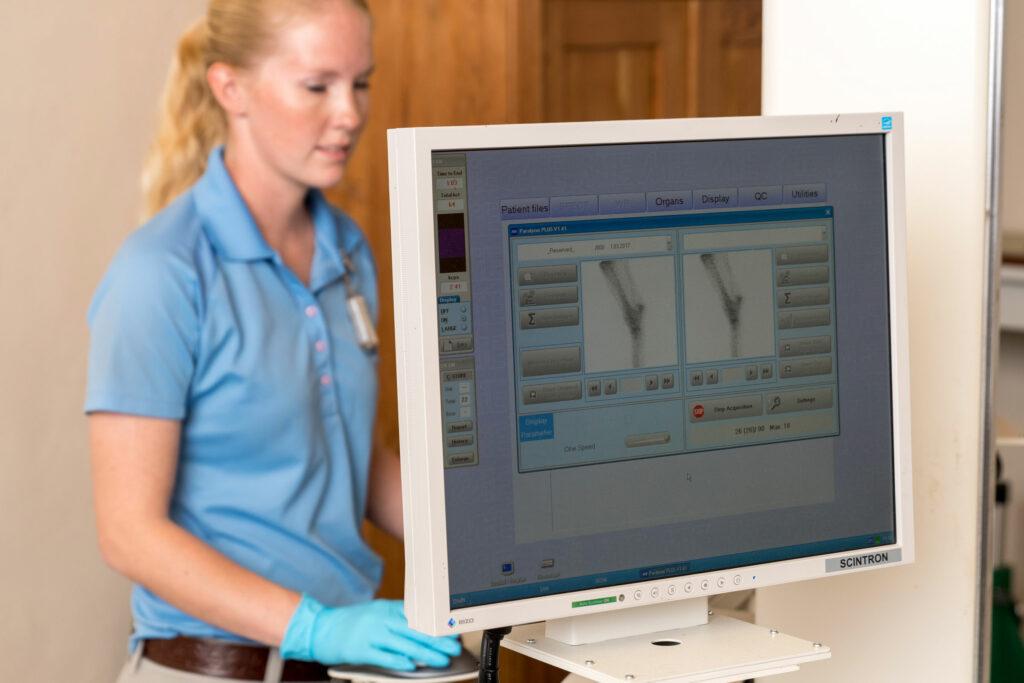 palm beach equine clinic bone scan diagnostic imaging