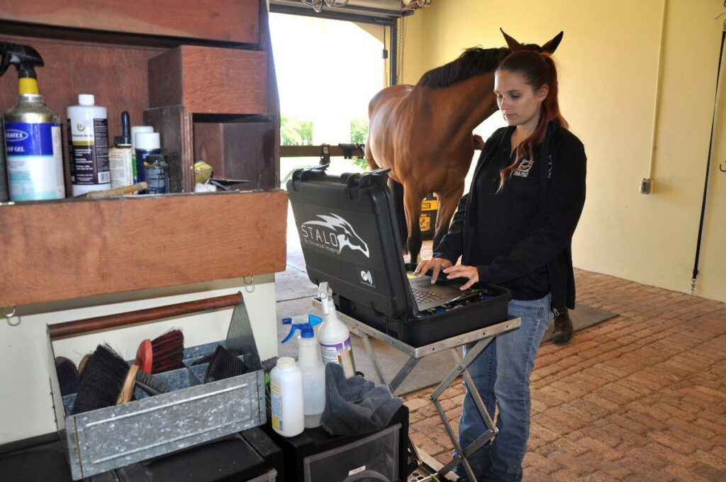 Meet Palm Beach Equine Clinic Veterinary Technician Brianna Ploskunak
