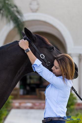 Equine Chiropractic Adjustments Palm Beach Equine Clinic Dr. Natalia Novoa