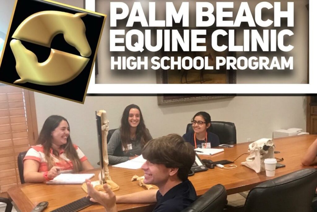 Through Wellington High School Equine Pre-Vet Program, Palm Beach Equine Clinic introduces students to a promising career as veterinary professionals.