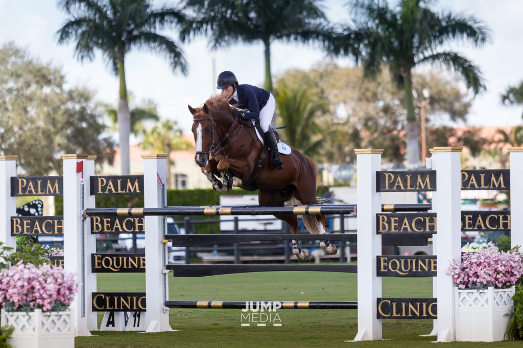 Palm Beach Equine Clinic Continues Dedication to Equestrian Community as Official Veterinarians of 2020 WEF and AGDF Circuits