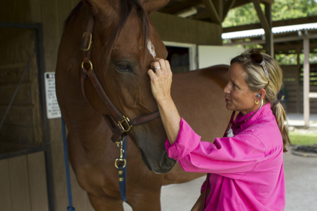 Dr. Kathleen Timmins Palm Beach Equine Clinic