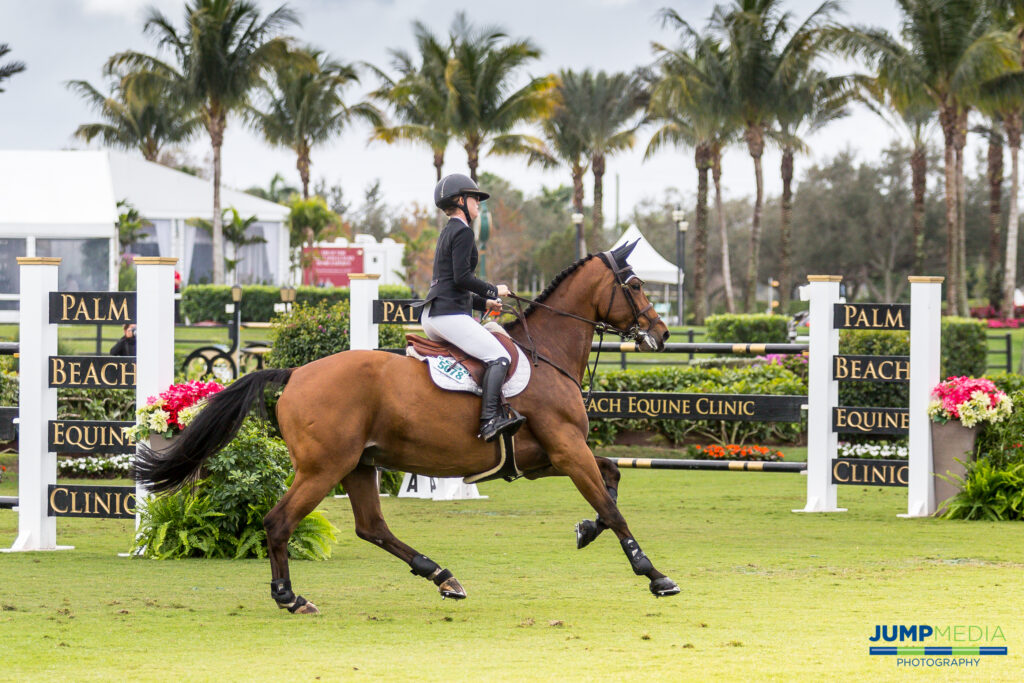 Understanding Energy Support for the Performance Horse Palm Beach Equine Clinic