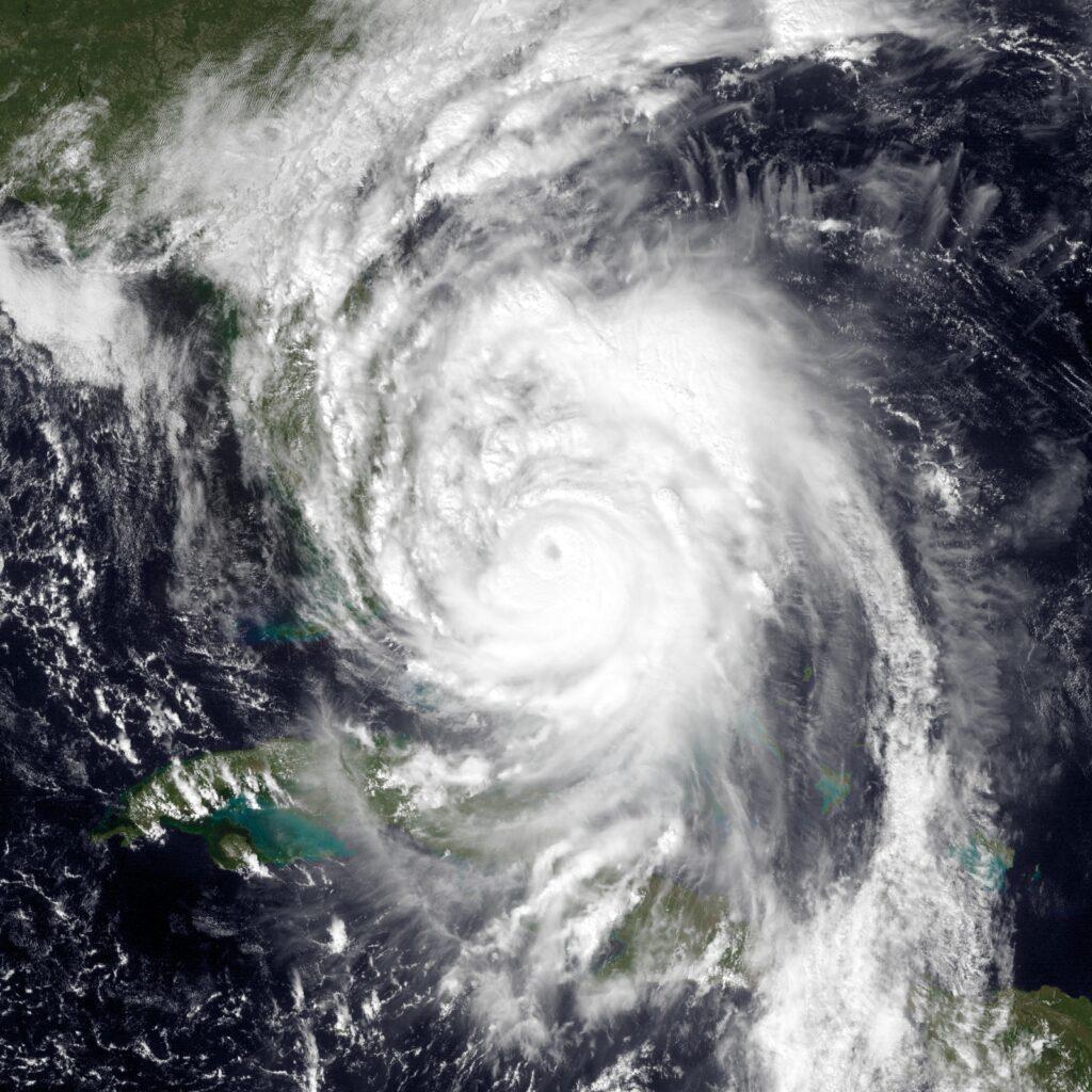 hurricane matthew veterinarians on call south florida palm beach equine clinic