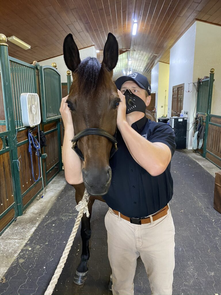 Palm Beach Equine Clinic Veterinarian Dr. Ryan Lukens Veterinary Chiropractic Adjustment Manipulation TMJ