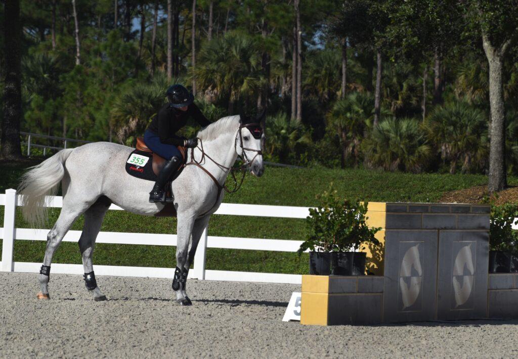 M R Training Days jim brandon equestrian center horse jumping standing