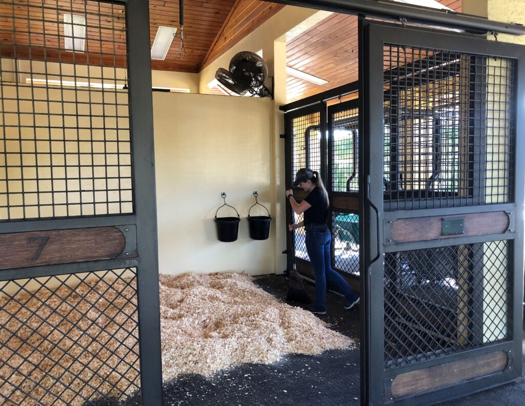 Clean stall at Palm Beach Equine Clinic Horse Hospital in Wellington Florida.