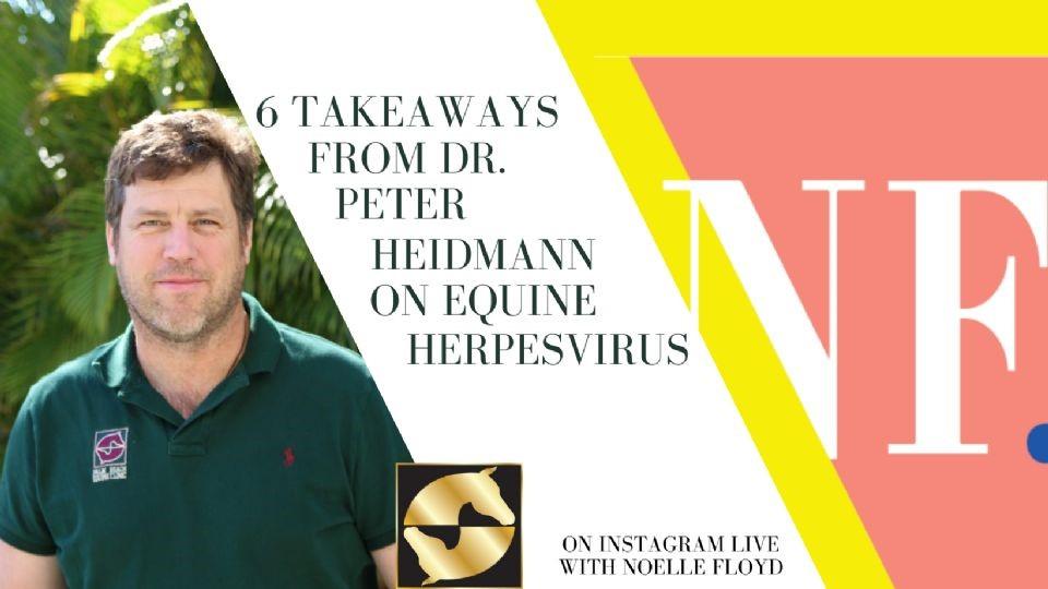 Dr. Peter Heidmann veterinarian Noelle Floyd equine herpesvirus instagram takeover