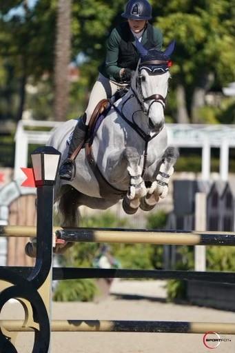 Sebastian - Serena Marron - Sportfot photo from Winter Equestrian Festival 2021 in Wellington Florida