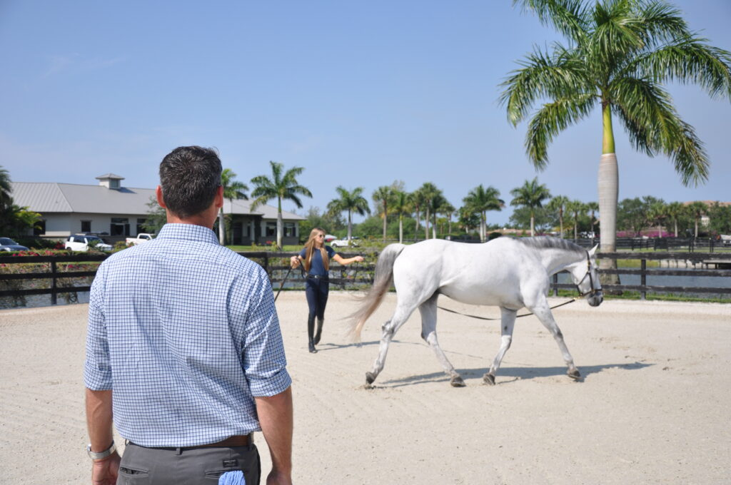 Palm Beach Equine Clinic veterinarian Dr. Bryan Dubynsky performance evaluation on the lunge line before administering a self-derived biologic treatment.