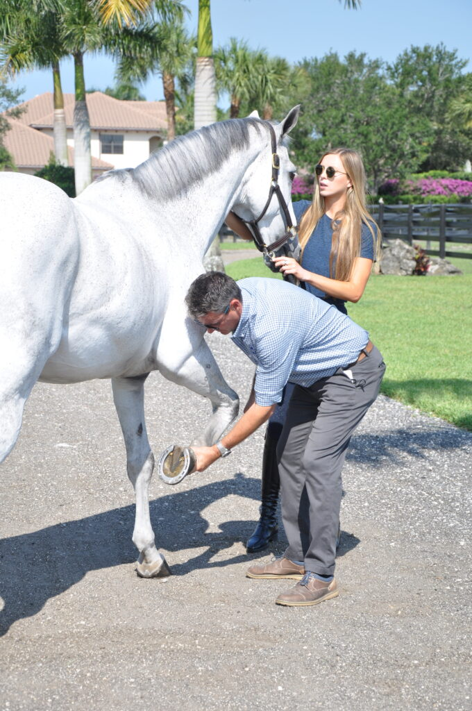 Palm Beach Equine Clinic veterinarian Dr. Bryan Dubynsky examining the horse's front leg before administering a self-derived biologic treatment.