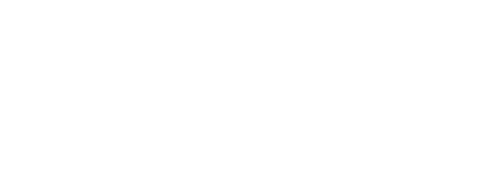 Zwile Media