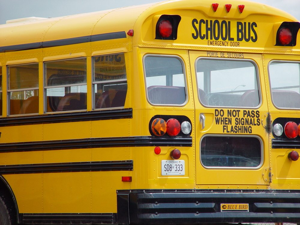 School Bus Back View