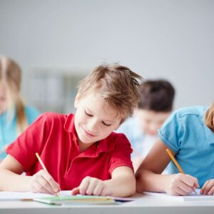 School Skills BTEI