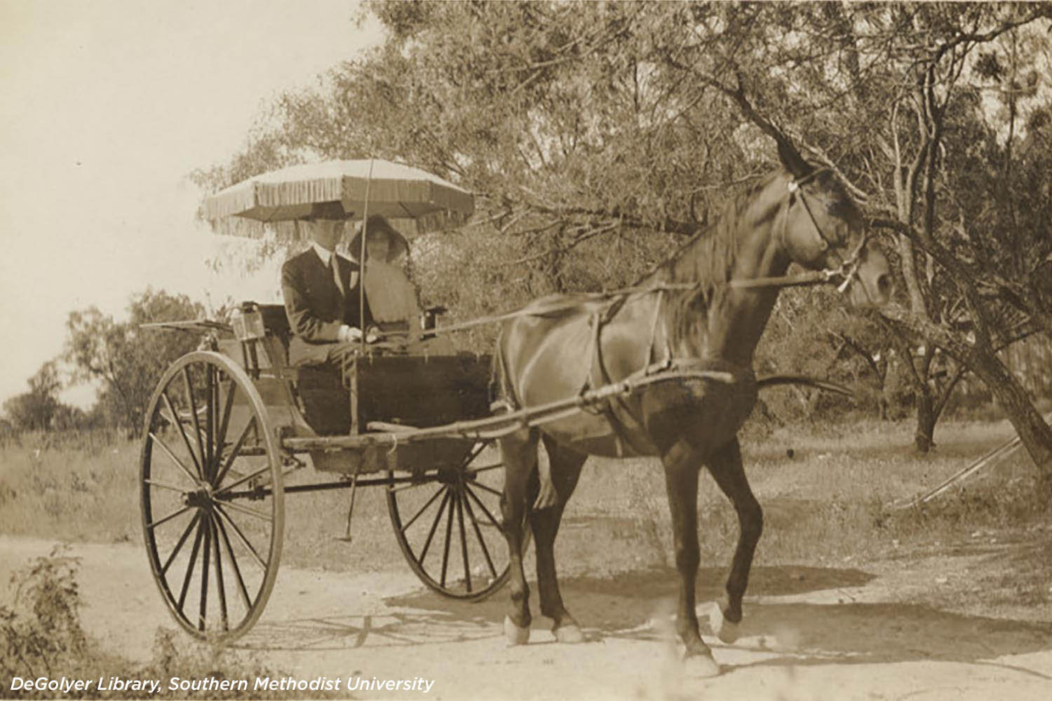 Couple in a horse-drawn buggy