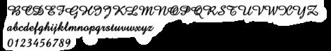 amazone - 2