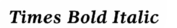 times bold italic - 1