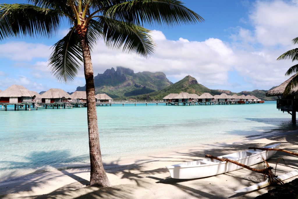 the wave provocateur bora bora french polynesia surf
