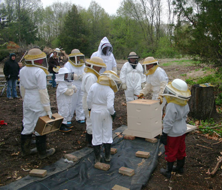 Young-Beekeepers-First-Hive