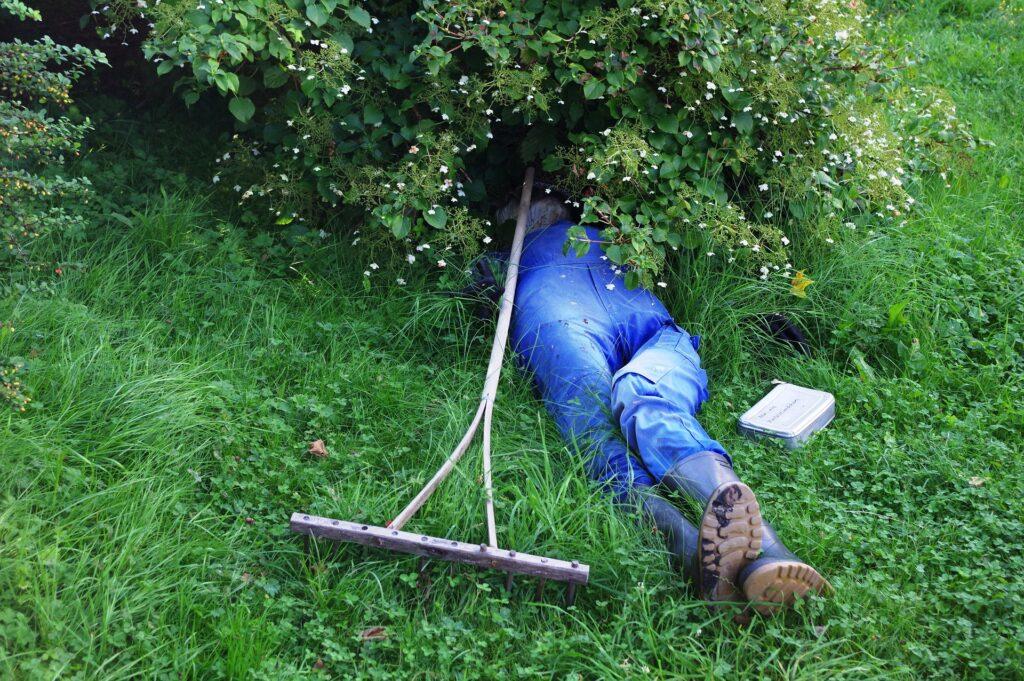 Someone taking a nap under a bush