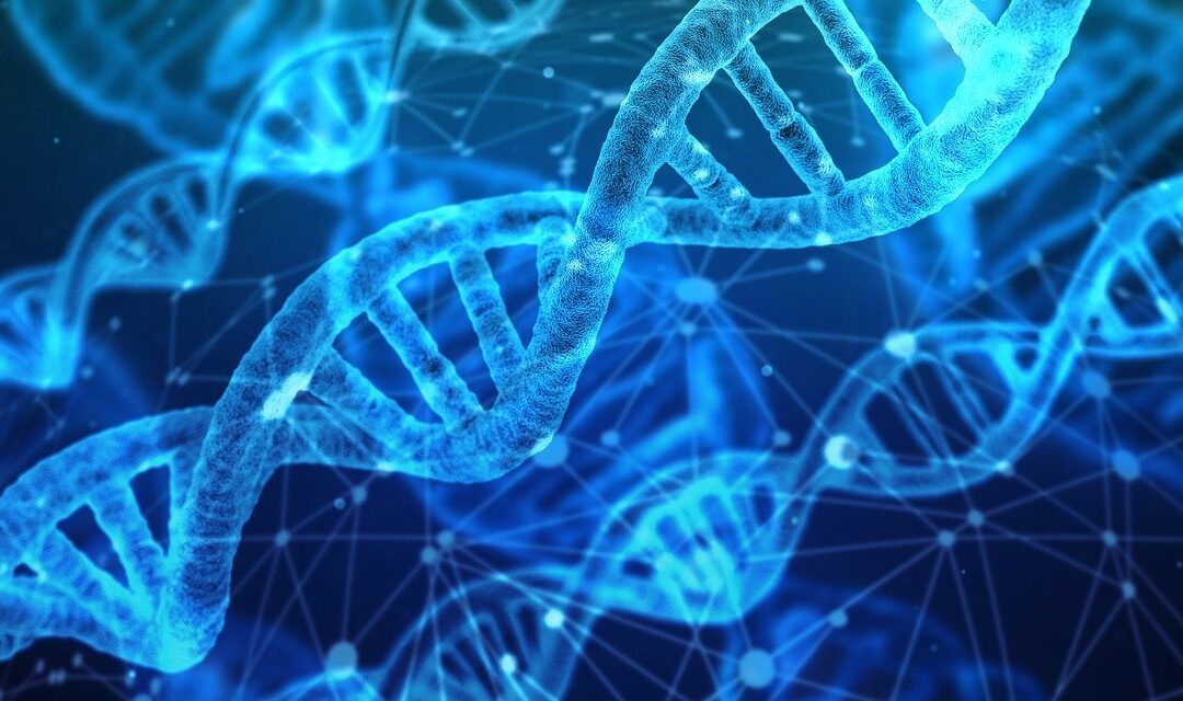 COMT Genes and Lifestyle: How It's All Connected
