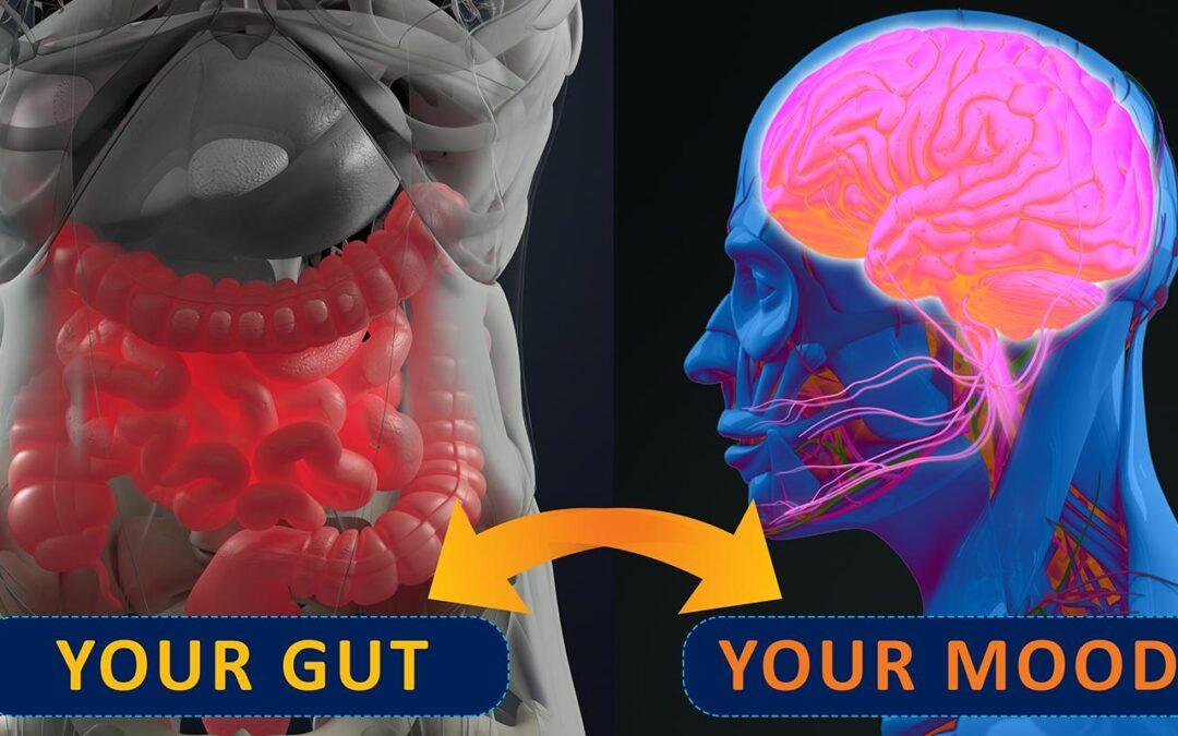 Stress, Anxiety, and IBS