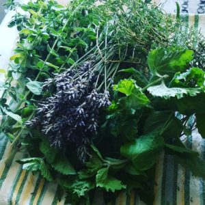local herbs island girl catering fresh ingredients