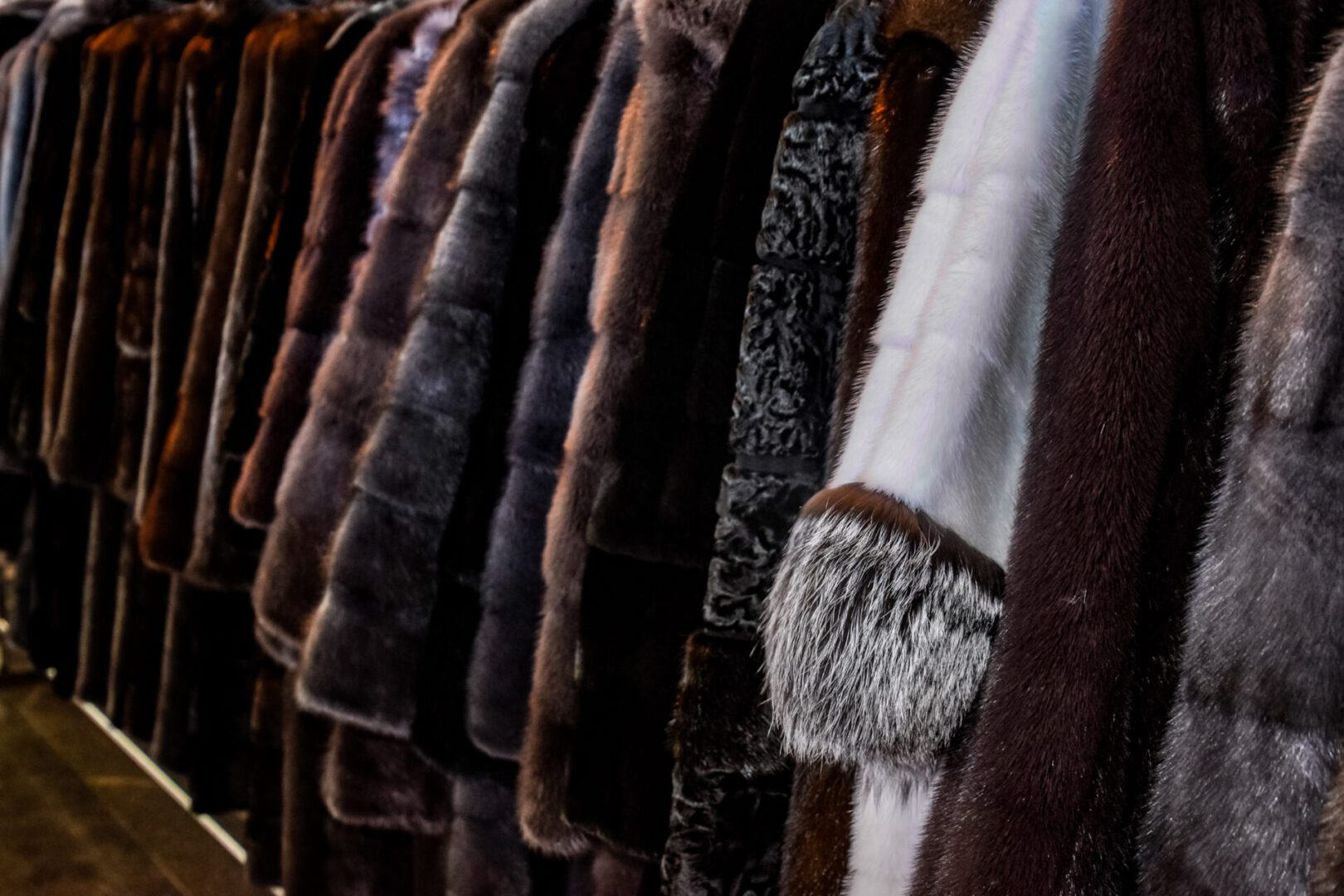 Fur coats on hangers. Fur store. fur coats in a row.
