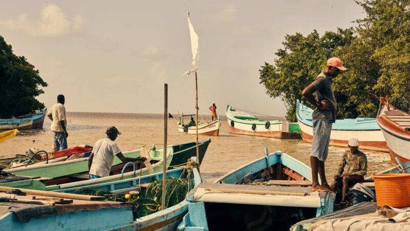 guyana off shore fishing