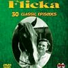 My Friend Flicka TV Shows