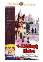 The Littlest Hobo - TV Classics