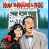 How To Frame a Figg starring Don Knotts