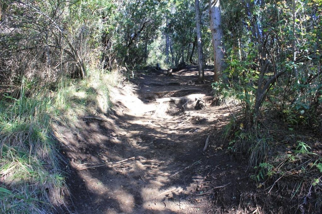 Trail to the Cerro Campanario Summit in Bariloche, Argentina