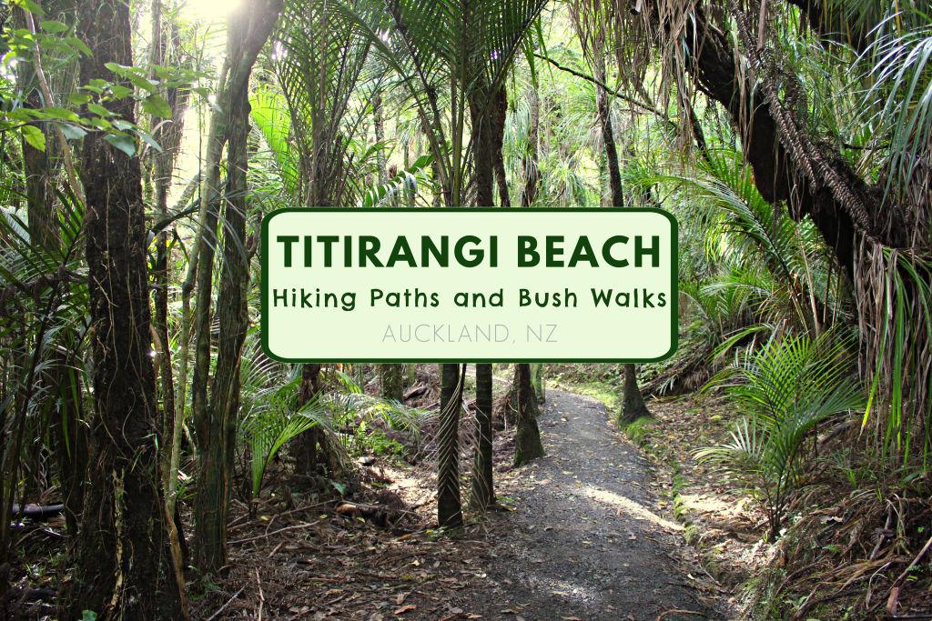 Titirangi Beach Hiking Paths and Bush Walks near Auckland NZ by JetSettingFools.com