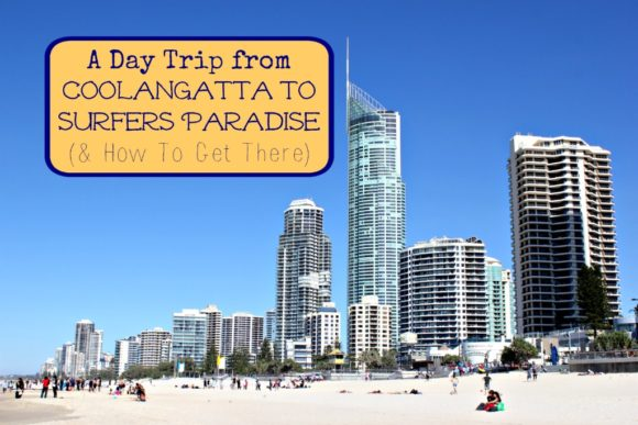 Day Trip from Coolangatta to Surfers Paradise How To Get There by JetSettingFools.com