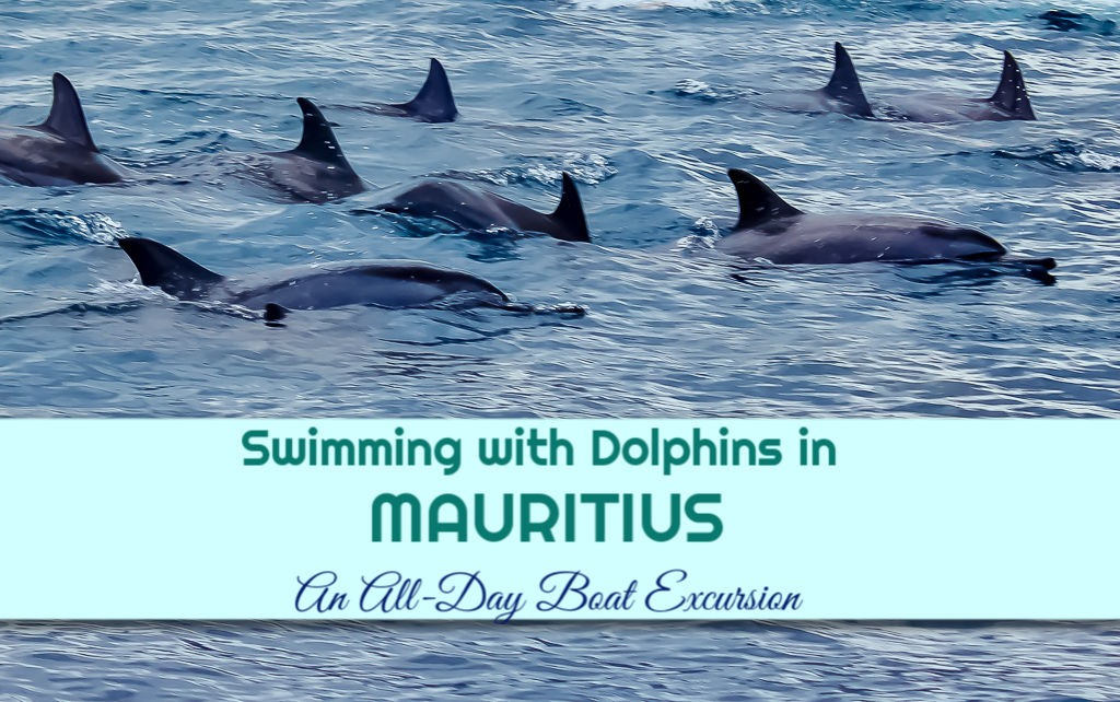 Swimming with Dolphins in Mauritius: A Boat Excursion by JetSettingFools.com