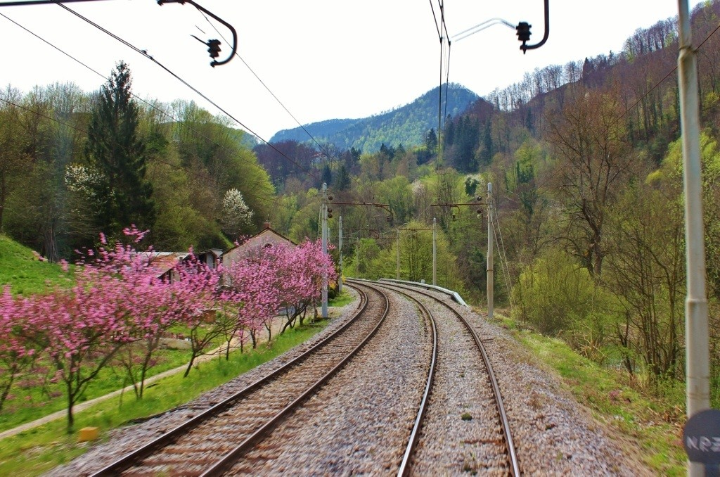 Train to Budapest: Watching the tracks as we traveled from Ljubljana to Budapest.