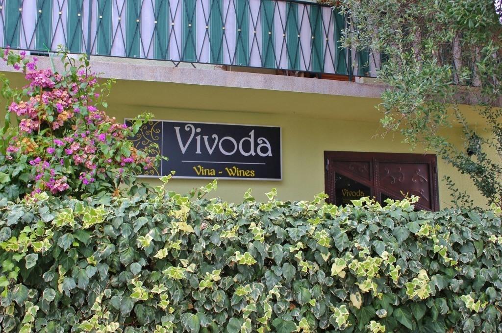 Wine tasting in Rovinj at Vivoda Winery