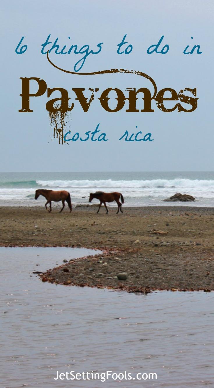 6 things to do Pavones, Costa Rica Wild Horses on Beach