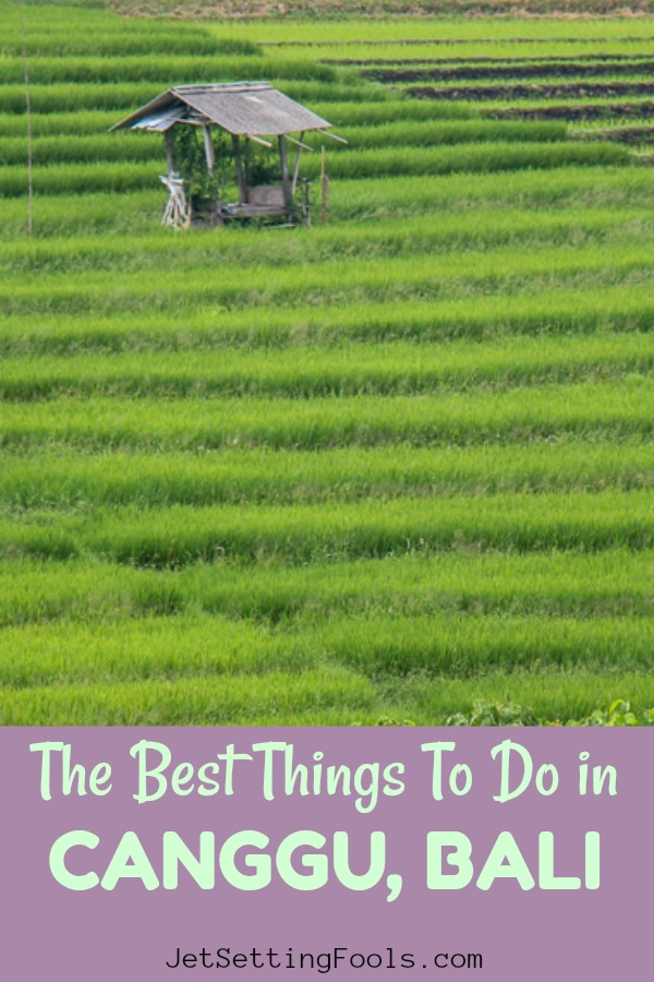 10 Best Things To Do in Canggu, Bali, Indonesia by JetSettingFools.com