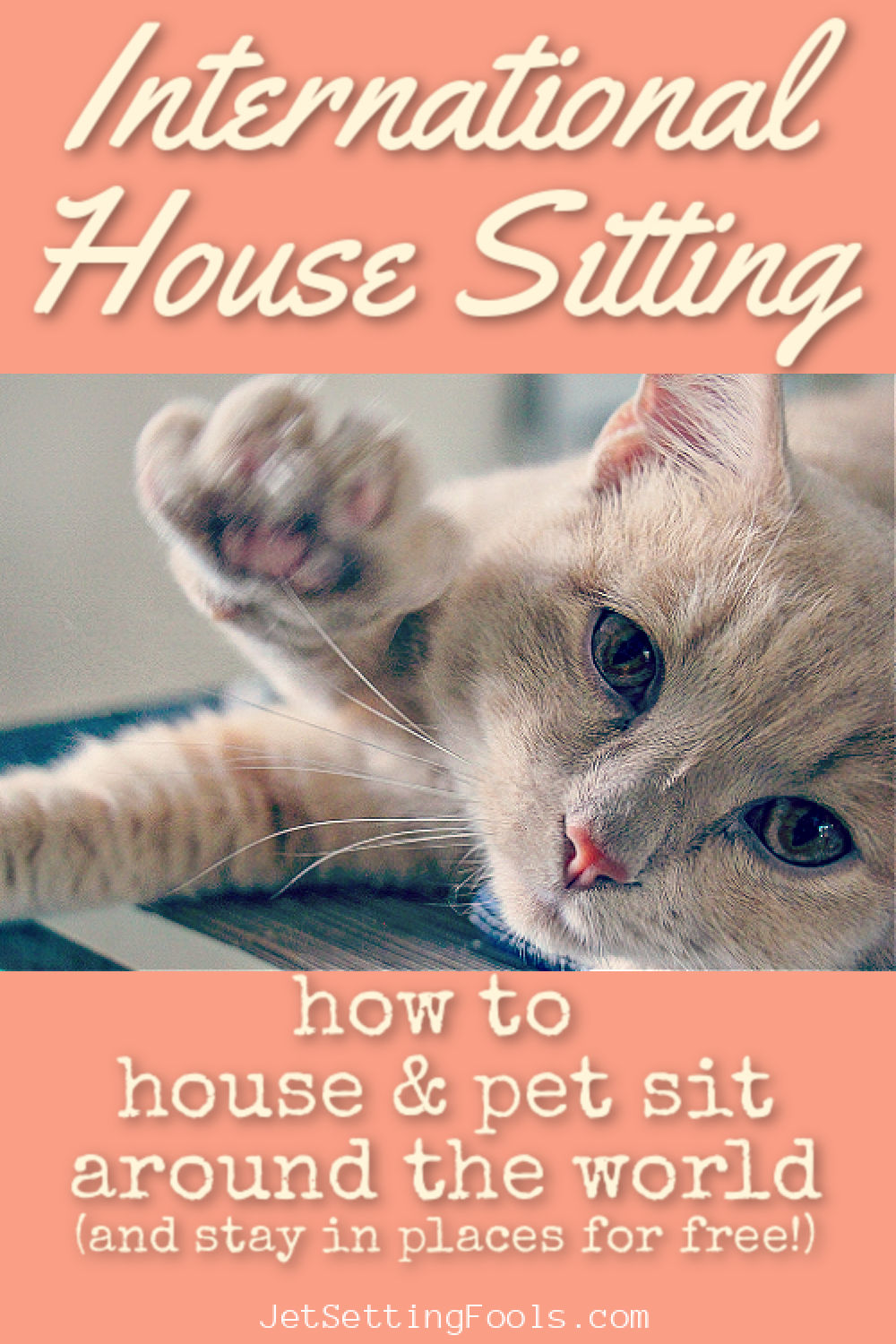 International Housesitting How To House and Pet Sit by JetSettingFools.com