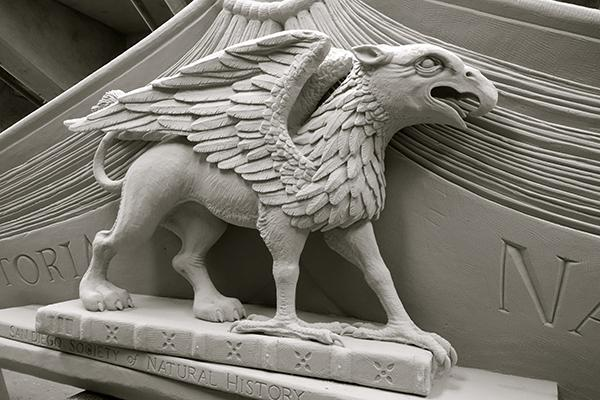 """Image of the griffin pediment, which now marks the entrance to """"Extraordinary Ideas"""" exhibit. (Photo by Michael Field)"""