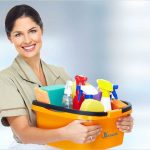 Cleaning Tips from the Pros