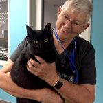 Humane Society volunteer helps keep pets out of the shelter
