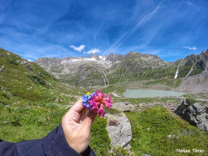 passeios alpes suiços