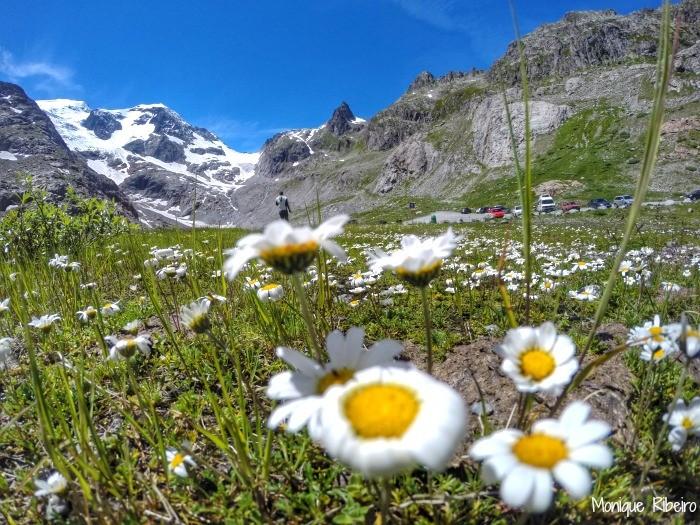 sustenpass alpes suiços