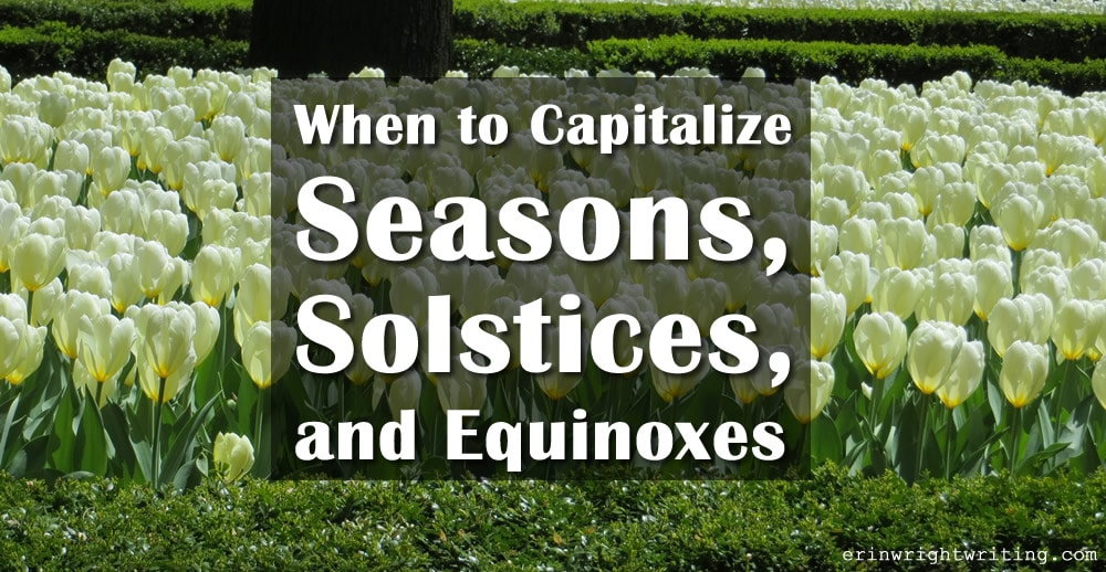 Image of Tulips | When to Capitalize Seasons, Solstices, and Equinoxes