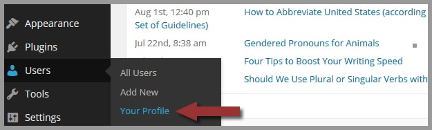 Step 1: How to Edit Your Ignored Words and Phrases in WordPress